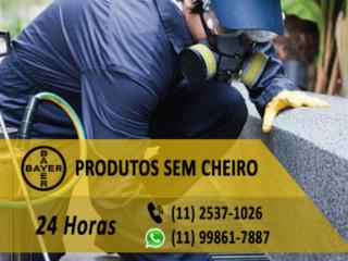 Maximos Dedetizadora / Empresa Especializada em Controle de Pragas