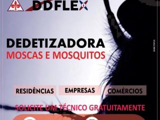 Dedetização de mosquitos em Pendotiba